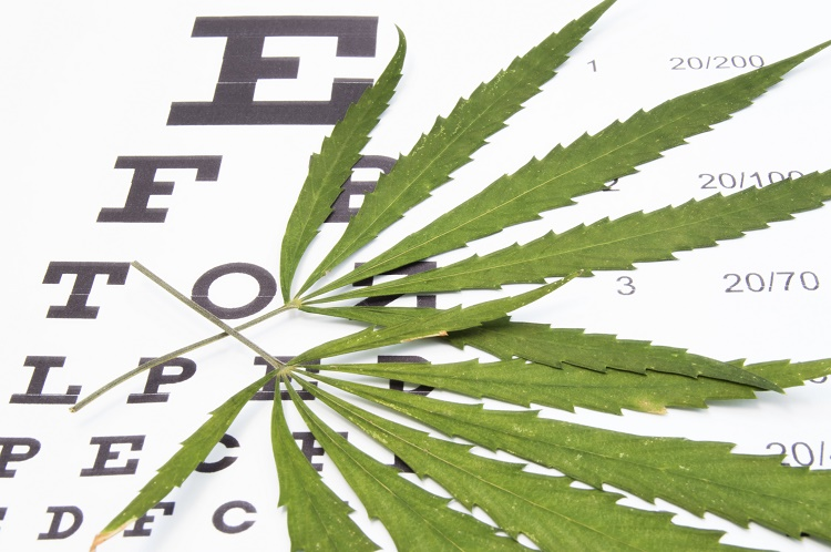 Medical Marijuana: Not Useful for Glaucoma